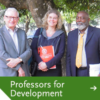 Professors for Development
