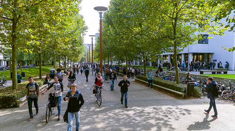 Partner Excellence Scholarship for Non-EEA Students at Tilburg University, Netherlands